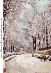 Winter Scene Postcard