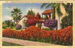 Home w/Tropical Foliage Postcard
