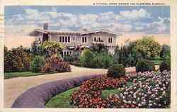 Typical Home among flowers Postcard