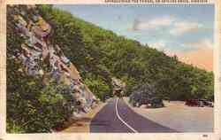 Tunnel on Skyline Dr Postcard