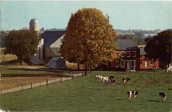 Typical Amish Farm Heart of Amishland Witmer Pennsylvania