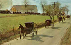 Mennonite Carriages At Church