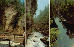 A Capsule Version of The Trip Thru Famous Ausable Chasm Postcard