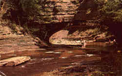 Bridge Along the Gorge, Stony Brook State Park Postcard