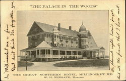 The Palace in the Woods The Great Northarn Hotel Postcard