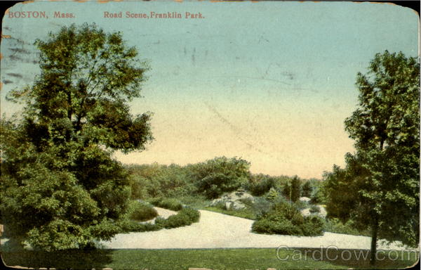 Road Scene, Franklin Park Boston Massachusetts