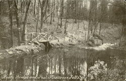 Rustic Bridge And Pool, Middlesex Fells