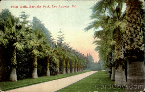Palm Walk, Eastlake Park Los Angeles California