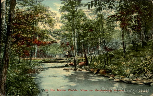 In the Maine Woods, View on Kenduskeag Stream