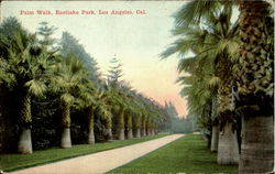 Palm Walk, Eastlake Park