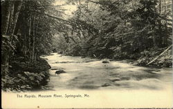 The rapids , mousam river