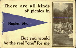 There are all kinds of picnics in Naples, Me.But you would be the real ONE for me. Postcard