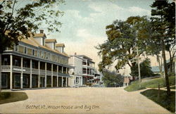 Wilson House and Big Elm