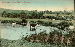 West River, In The Heart Of Vermont