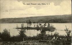 The Island Pleasant Lake