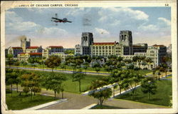 University Of Chicago Campus Postcard