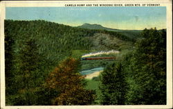 Camels Hump And The Winooski River Postcard