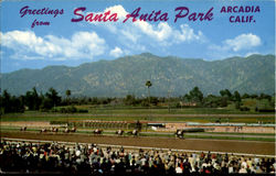 Greetings from Santa Anita Park