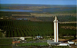 Arial View Citrus Tower, U.S. Highway 27