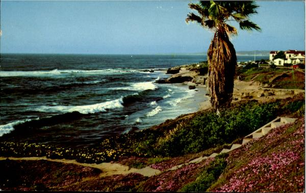 Along The Shore At Beautiful La Jolla, California