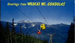 Wildcat Mountain Gondola