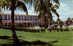 The Lodge Located At Flamingo Postcard