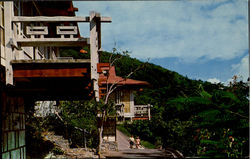 St. Thomas U.S. Virgin Islands Postcard