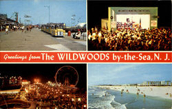 Greeting From The Wildwoods By The Sea N.J