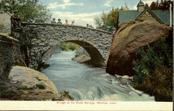 Bridge At The Soda Springs