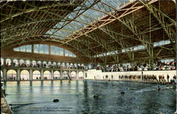 Interior Of Bathing Pavilion, Venice Of America