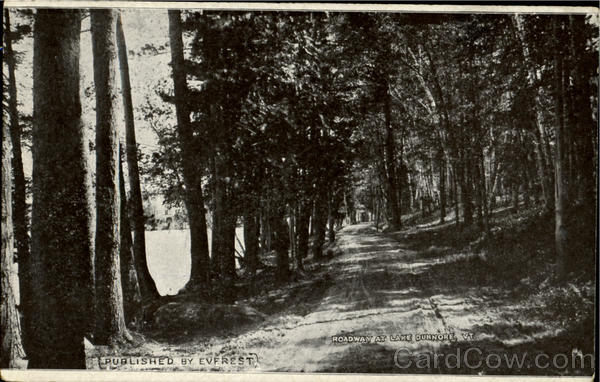 Roadway At Lake Dunnore Vermont