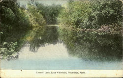Lovers' Lane,Lake Whitehall