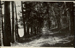 Roadway At Lake Dunnore