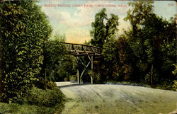 Rustic Bridge,Come Park Postcard
