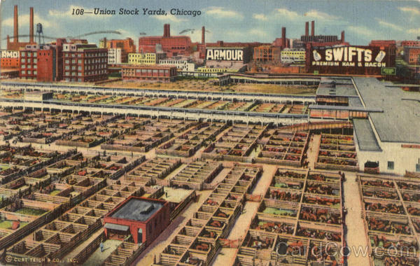Union Stock Yards Chicago Illinois