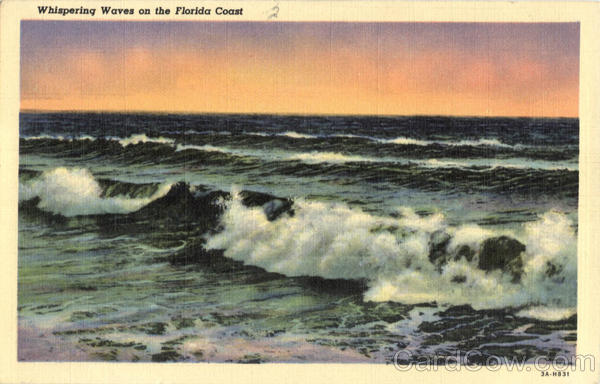 Whispering Waves on the Florida Coast Scenic