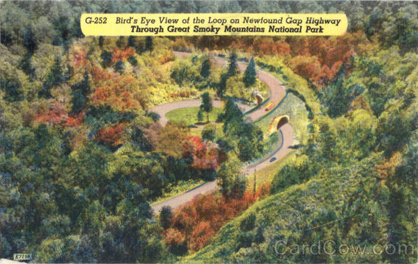 Bird's Eye View of the Loop on Newfound Gap Highway Great Smoky Mountains National Park North Carolina