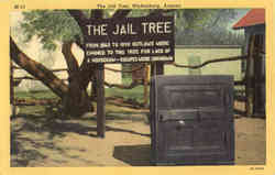 The Jail Tree