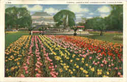 Formal Garden and Conservatory Lincoln Park Postcard