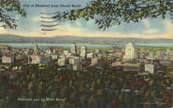 City of Montreal from Mount Royal Postcard