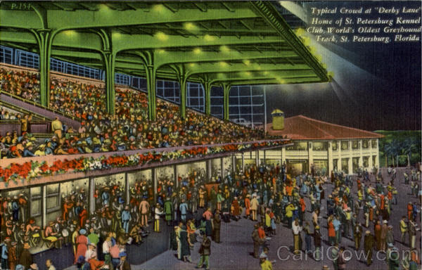 Typical Crowd at Derby Lane Home of St. Petersburg Kennel Club World's Oldest Greybound Track Florida