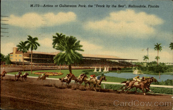 Action at Gulfstram Park the Track by the sea Hallandale Florida