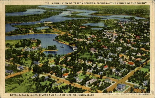 Aerial View Of Tarpon Springs The Venice Of The South Florida