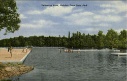 Swimming Area, Natchez Trace State Park
