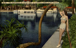 "The Honeymoon Or ""Lucky Tree"", Florida'S Silver Suppings"