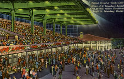 "Typical Crowd at ""Derby Lane"" Home of St. Petersburg Kennel Club World's Oldest Greybound Track Postcard"