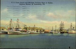 Coast Guard and Maritime Training Ships, Bayboro Harbor