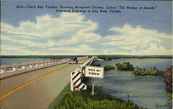 Torch Key Viaduct Showing Mangrove Growth called The Mother of Islands, Overseas Highway to Key West