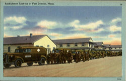 Ambulance Line-Up At Fort Devens