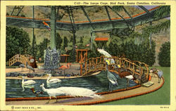 The Large Cage, Bird Park